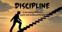Discipline Stairs